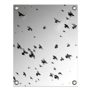 Birds outdoor poster sipp outdoor villa madelief