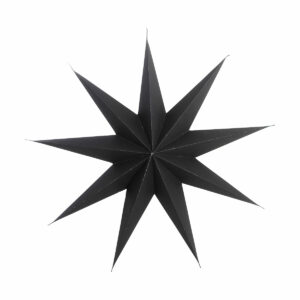 Christmas star black house doctor