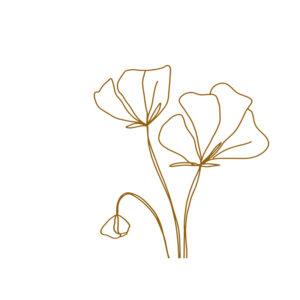 Huis van Mijn kaart bloemenlijn